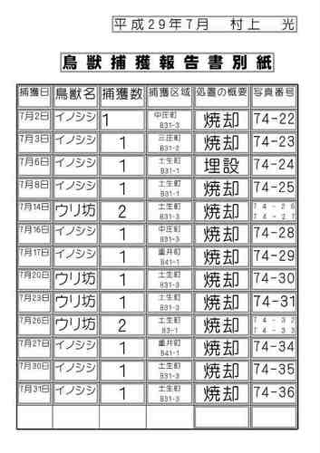 捕獲報告書.jpg
