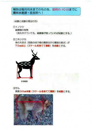 有害捕獲確認方法-2-2.jpg